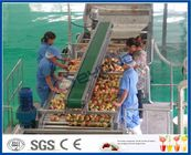 CE Apple Processing Line with Automatic Disinfection Liquid Concentration Control System