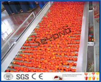 토마토 심기 기계 토마토 가공 라인 전 / 반자동 2-50 T / H